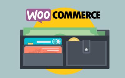 WooCommerce Bezahloptionen: Paypal, Rechnung, Kreditkarte, Postfinance & Co.
